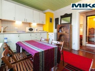 Old Istanbul Wooden House, CHEAP for Family - Istanbul vacation rentals