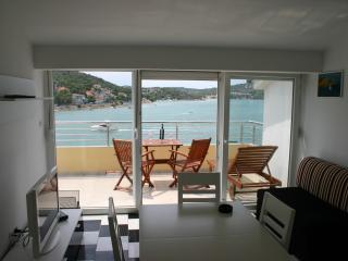 Villa Stegic -1 bedroom apartment - Tisno vacation rentals