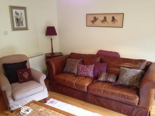 Beautiful 3 bedroom Ashford House with Dishwasher - Ashford vacation rentals