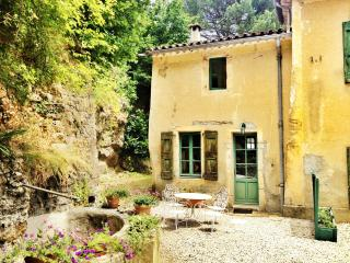 Cosy Romantic cottage 'Murier'  for 2 + - Saint-Hippolyte-du-Fort vacation rentals