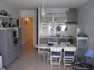 Cozy Le Grau Du Roi Studio rental with Television - Le Grau Du Roi vacation rentals