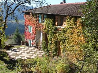 Bright 4 bedroom Grandris Gite with Internet Access - Grandris vacation rentals
