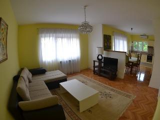 Nice & Spacious 2 Bed Ap - CENTER! - Jelsa vacation rentals