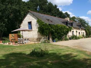 Nice Gite with Internet Access and Television - Dinge vacation rentals