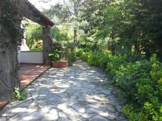 Da Rosaria - Forio vacation rentals