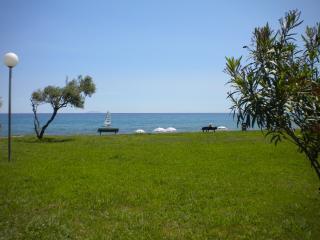 Villa en bord de mer - Cervione vacation rentals