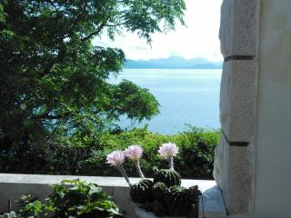 Lovely apt in Sobra, Mljet!! - Sobra vacation rentals