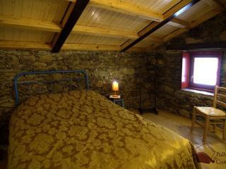 Palheiro do Castelo I - Logradouro - Guarda vacation rentals