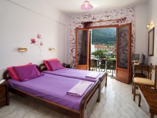 Romantic 1 bedroom Sami Apartment with Internet Access - Sami vacation rentals