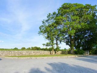 LISMAKEERA LODGE, multi-fuel stove, WiFi, wonderful views, great base for walking, Ref 914946 - Adare vacation rentals