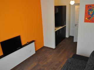 Bright 1 bedroom Klaipeda Apartment with Internet Access - Klaipeda vacation rentals