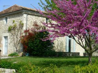 Charmante maison de campagne en pierres - Issigeac vacation rentals