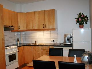 Down Town Apartment with Perfect Location - Reykjavik vacation rentals