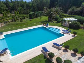 Villa Zarik - Hisaronu vacation rentals