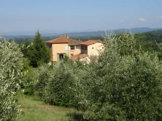 Rietine Farm Holidays - Cavriglia vacation rentals