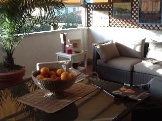 Nice Condo with Internet Access and Dishwasher - Forte Dei Marmi vacation rentals