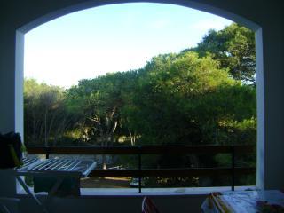 Una casa in mezzo al bosco sul mare - San Cataldo vacation rentals