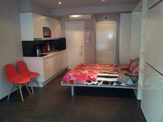 Nice Studio with Internet Access and A/C - Ghent vacation rentals