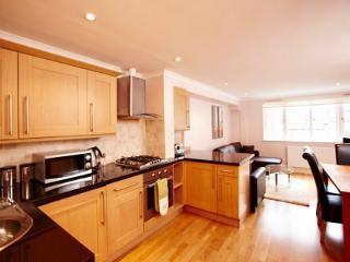 Classy Zone 1 Apartments - London vacation rentals