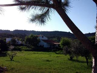 Orange Trees House - Setubal vacation rentals