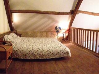 2 bedroom Farmhouse Barn with Internet Access in Le Blanc - Le Blanc vacation rentals