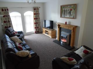 Nice House with Internet Access and Dishwasher - Coleraine vacation rentals
