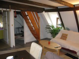 Charmant duplex sous les toits de Strasbourg - Strasbourg vacation rentals