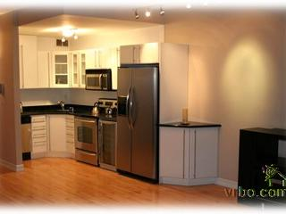 Sleeps 6! 2 Bed/2 Ba 1300 SqFt Downtown Manhattan - New York City vacation rentals