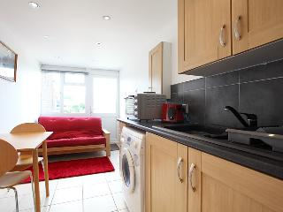 Compact Studio Flat/annex- Private Entrance - Woking vacation rentals