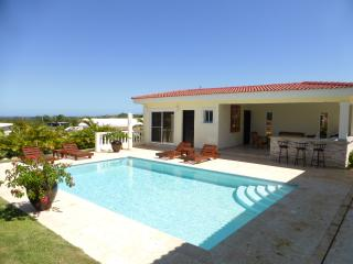 New ocean villa with palapa bar and BBQ by the pool area - Sosua vacation rentals
