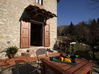 10313 - Farmhouse Naldoni - Ap - Pontassieve vacation rentals