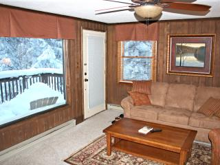 Treetop 3 Bedroom. Close to Village and Slopes - Snowshoe vacation rentals