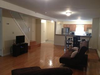 Brooklyn Favorite Vacation Home - Brooklyn vacation rentals