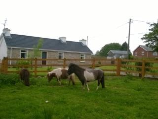 Wonderful Cottage in rural location - Letterbarrow vacation rentals