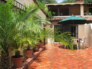 Ajijic Village, charming, Bright 3 blocks to Plaza - Ajijic vacation rentals