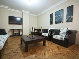 3 Bedroom 1 Livingroom Aprtmnt - Istanbul vacation rentals