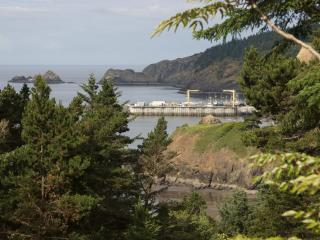 2 bedroom House with Deck in Port Orford - Port Orford vacation rentals