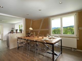 LA MAISON Freiburg. 5* Design Holiday Home - Kirchzarten vacation rentals