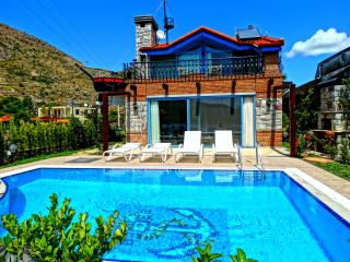 Nice Villa with Internet Access and A/C - Marmaris vacation rentals
