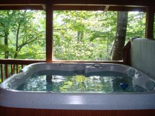 Charming 2 bedroom Blowing Rock Cabin with Deck - Blowing Rock vacation rentals