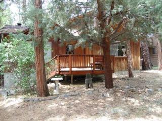 Cowboy Cabin - Idyllwild vacation rentals