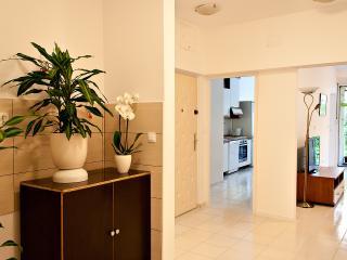 Deluxe Rino Apartment Split - Split vacation rentals