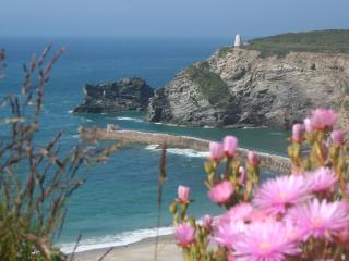 Sea Breeze - modern family home with sea glimpses - Portreath vacation rentals