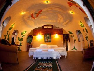 Tree Top Dome Honeymoon Suite - Quepos vacation rentals