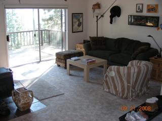 Ski Cabin - Dodge Ridge Ski Resort-Pinecrest,CA - Cold Springs vacation rentals