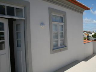 Murtosa house in the Ria de Aveiro near the Beach - Torreira vacation rentals