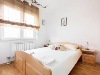 Galileo apartment, with jacuzzi, near center - Zagreb vacation rentals