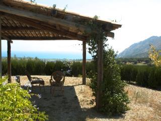 Strombillo: deliziosa villetta tra olivi E MARE - Copanello vacation rentals