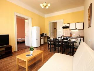 2BR 10min from Charles Bridge and across the river from National Theatre - Prague vacation rentals
