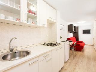 Modern City Studio, free Wi-Fi - Zagreb vacation rentals